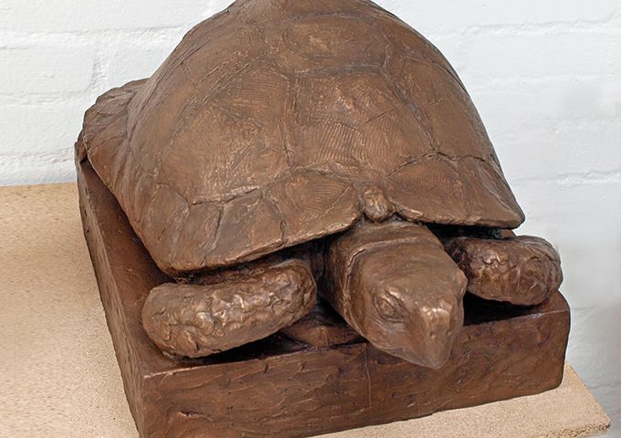 Schildkröte aus Bronze von Klaus Kütemeier